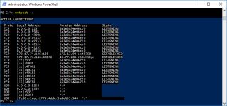 Netstat Hyper-V Container Established
