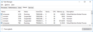 Hyper-V Processes on Host